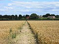 Farmland with footpath near Cadmore End - geograph.org.uk - 1568857.jpg