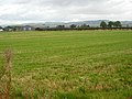 Field at Newmains - geograph.org.uk - 565481.jpg
