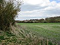 Field at the end of the Disused Railway Line - geograph.org.uk - 1230951.jpg