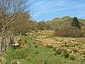 Field beside the road to Ardmaddy Castle - geograph.org.uk - 388226.jpg