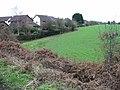 Field margin and footpath, Brabourne Lees - geograph.org.uk - 644742.jpg