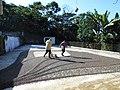 Finca Piamonte, San Rafael Pie de la Cuesta 16.JPG