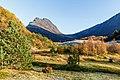 Finnvikdalen 1.jpg