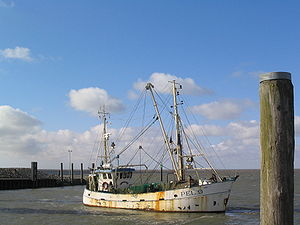Fishing in the North Sea - A trawler in Nordstrand, Germany