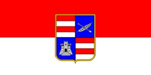 Metković - Image: Flag of Dubrovnik Neretva County