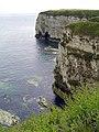 Flamborough Cliffs - geograph.org.uk - 173336.jpg