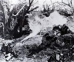 250px-Flamethrower_in_Tarawa_jungle