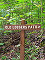 Flickr - Nicholas T - Old Loggers Path (1).jpg