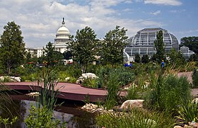 Flickr - USCapitol - The U.S. Capitol and U.S. Botanic Garden.jpg