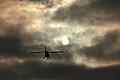 Flight to the sun. (5364542763).jpg