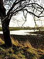 Flooded Field - geograph.org.uk - 1072626.jpg