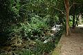 Floresta da Tijuca 13.jpg
