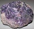 Fluoritized fossiliferous limestone (Mississippian; Hastie Quarry, near Cave-in-Rock, Illinois, USA) 1 (26234842755).jpg