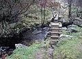 Footbridge in the Valley of Desolation - geograph.org.uk - 1050538.jpg