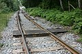 Footpath Crossing Railway - geograph.org.uk - 464234.jpg
