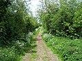 Footpath To Wychnor - geograph.org.uk - 445993.jpg