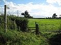 Footpath at Drakes Broughton - geograph.org.uk - 926411.jpg