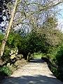 Footpath in Battersea Park-geograph-2323900.jpg