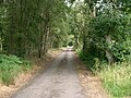 Forest Road - geograph.org.uk - 216471.jpg