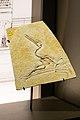 Fossil of small flying dinosaur (39146591831).jpg