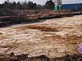 Fouilles archeologiques a Darvault (77) - 08.JPG