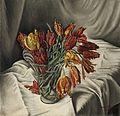François Barraud - Tulips perroquets, 1931.jpg