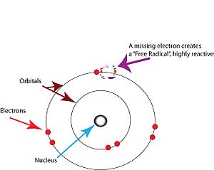 Free-radical theory of aging - In chemistry, a free radical is any atom, molecule, or ion with an unpaired valence electron