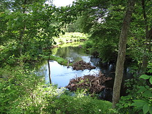 French River (Massachusetts) - French River south of West Main Street, Hodges Village, Oxford, Massachusetts