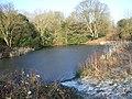 Frozen pond, Northend - geograph.org.uk - 115053.jpg