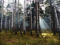G. Miass, Chelyabinskaya oblast', Russia - panoramio (71).jpg
