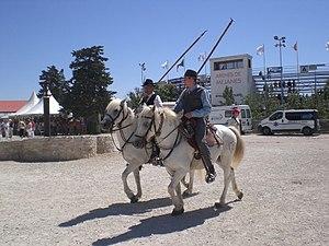 Gardian - Gardians at the arena of Méjanes, in Arles, France.
