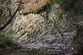 Gefalteter Kalk am Emsbach bei Oberbrechen II.jpg