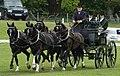George Bowman Hopetoun 2005 horse driving.jpg