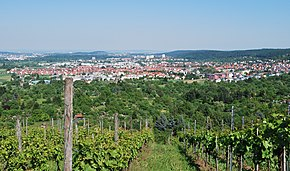 Gerlingen Panorama Forchenrainstraße.jpg