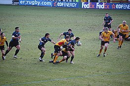 Glasgow Warriors vs Newport Gwent Dragons - January 9, 2009 - 2.jpg