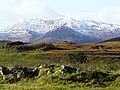 Glen Strathfarrar - geograph.org.uk - 1029320.jpg