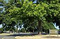 Glenhaven Park sign - Portland, Oregon.jpg