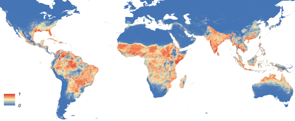 Global Aedes aegypti distribution (e08347)