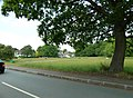 Green in Manor Park Road - geograph.org.uk - 1905358.jpg