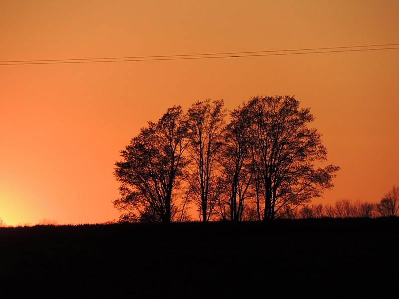 File:Grey County Sunset (34555143571).jpg
