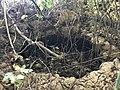 Grotta lato nord di Siracusa 06.jpg