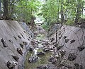 Grover Tributary of Shoal Creek.jpg