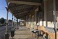 Gulgong NSW 2852, Australia - panoramio (65).jpg