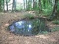 Guteborn, Nebenquell des Kühlen Borns mit Verlauf zum Wallgarben des Schlosses, Spätfrühling, 01.jpg