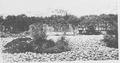 Gyeongbokgung Rotus Pond 1906 2.png