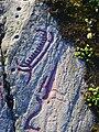 Hällristningar i Herrebro, den 25 augusti 2008, bild 9.JPG
