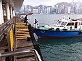 HK TST 尖沙咀 Tsim Sha Tsui 梳士巴利花園 Salisbury Garden public piers 維多利亞港 Victoria Harbour March 2020 SSG 07.jpg
