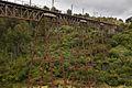 Hapuawhenua Viaduct (7580081964).jpg