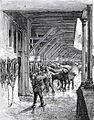 Harnachement des chevaux depot CGO.jpg