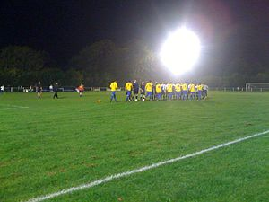Harpenden Town F.C. - Harpenden Town FC vs Kings Langley at Rothamsted Park, 28 September 2010